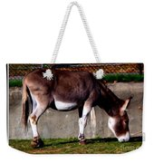 Donkey With Oil Painting Effect Weekender Tote Bag