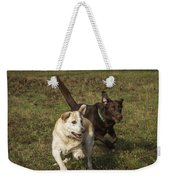 Don't Forget To Look Up Weekender Tote Bag