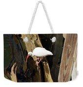 White Ibis Bird Weekender Tote Bag