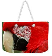 Dont You Dare To Stare Macaw Weekender Tote Bag