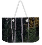 Dormant And Not Weekender Tote Bag