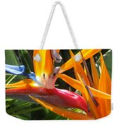 Double Bird Of Paradise - 1 Weekender Tote Bag