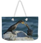 Double-crested Cormorants Weekender Tote Bag