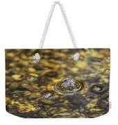 Down By The Bubbling Spring Weekender Tote Bag
