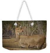 Down By The Duck Pond Weekender Tote Bag