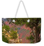 Down Into The Grand Canyon Weekender Tote Bag