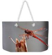 Dragon Fly- Br Weekender Tote Bag