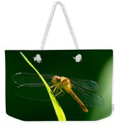 Dragon Fly On Grass Weekender Tote Bag