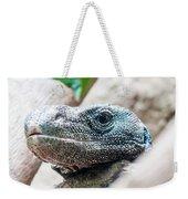 Dragon Lizzard Portrait Closeup Weekender Tote Bag