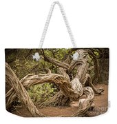 Dragon Tree Weekender Tote Bag