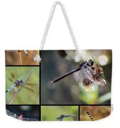 Dragonflies On Twigs Collage Weekender Tote Bag