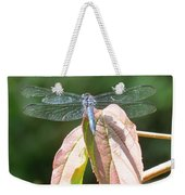 Dragonfly In Early Autumn Weekender Tote Bag