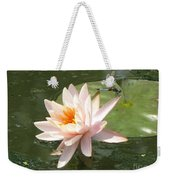 Dragonfly Landing Weekender Tote Bag by Amanda Barcon