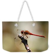 Dragonfly Light Weekender Tote Bag