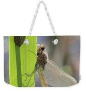 Dragonfly Metamorphosis - Eighth In Series Weekender Tote Bag