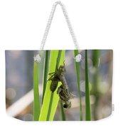 Dragonfly Metamorphosis - First In Series Weekender Tote Bag