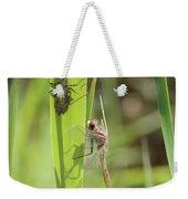 Dragonfly Metamorphosis - Tenth In Series Weekender Tote Bag