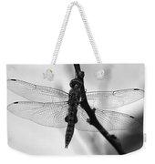 Dragonfly Mosaic Weekender Tote Bag