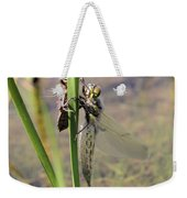 Dragonfly Newly Emerged - First In Series Weekender Tote Bag