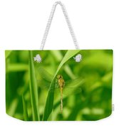 Dragonfly On A Grass Stem Weekender Tote Bag