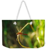 Dragonfly On A Summer Day Weekender Tote Bag
