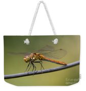 Dragonfly On A Wire Weekender Tote Bag
