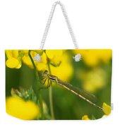 Dragonfly On Birds-foot Trefoil Weekender Tote Bag