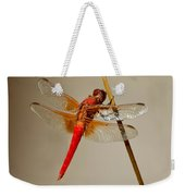 Dragonfly On Dead Reed Weekender Tote Bag