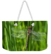 Dragonfly On Grass Weekender Tote Bag