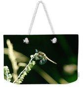 Dragonfly Resting In The Wind  Weekender Tote Bag