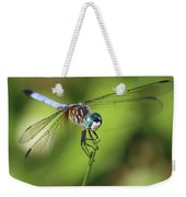 Dragonfly Square Weekender Tote Bag