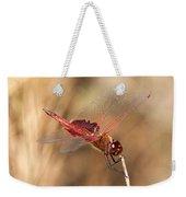Dragonfly Weekender Tote Bag