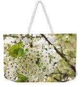 Dreamy White Cherry Blossoms - Impressions Of Spring Weekender Tote Bag