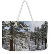 Distant Peak Weekender Tote Bag