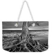 Driftwood On Jekyll Island Black And White Weekender Tote Bag