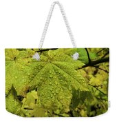 Dripping Vine Maple Weekender Tote Bag