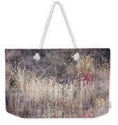 Dry Grasses And Bare Trees In Winter Forest Weekender Tote Bag by Elena Elisseeva