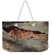 Dry Rotting Tree Weekender Tote Bag