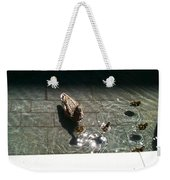 Ducks At The American Indian Museum Weekender Tote Bag