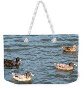 Ducks On Spaulding Pond Weekender Tote Bag
