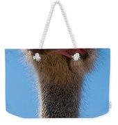 Duh Weekender Tote Bag by Jean Noren