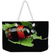 Dung Beetle Panama Weekender Tote Bag