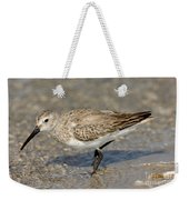 Dunlin Calidris Alpina In Winter Plumage Weekender Tote Bag