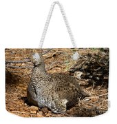 Dusky Grouse With Chicks Weekender Tote Bag