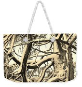 Snow Dusted Limbs Weekender Tote Bag