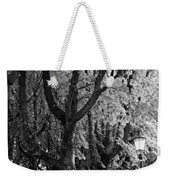 Dutch City Trees - Black And White Weekender Tote Bag