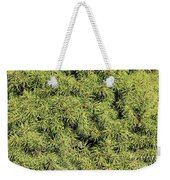 Dwarf Evergreen Weekender Tote Bag