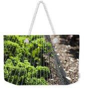 Dwarf Green Curled Weekender Tote Bag