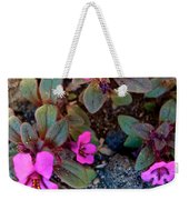 Dwarf Purple Monkeyflower In Lava Beds Nmon-ca Weekender Tote Bag