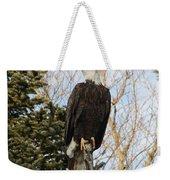 Eagle 5 Weekender Tote Bag